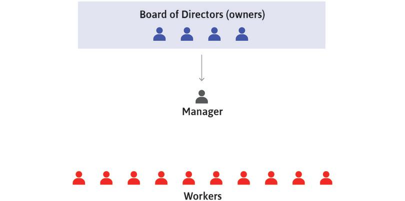 Owners decide long-term strategies: The owners, through their board of directors, decide the long-term strategies of the firm concerning how, what, and where to produce. They then direct the manager(s) to implement these decisions.