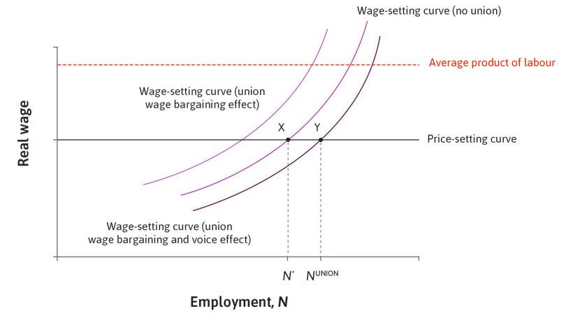 wage setting curve in an economy Efficiency wage setting, labor demand, and phillips curve microfoundations while the economy's transition path can be illustrated either the dynamic labor by.