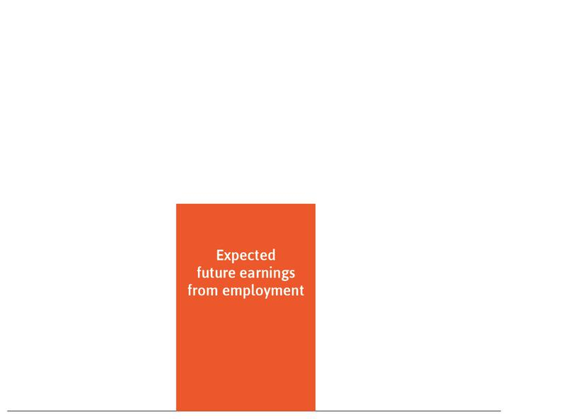 Expected future earnings from employment : These are represented by the orange rectangle.