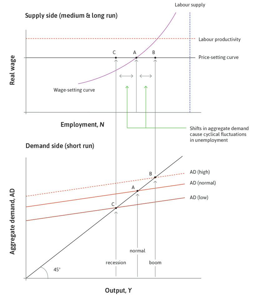 A slump : If the aggregate demand curve shifts down, then through the multiplier process, output and employment fall to C. Unemployment rises above 5%. The additional unemployment is called cyclical unemployment.