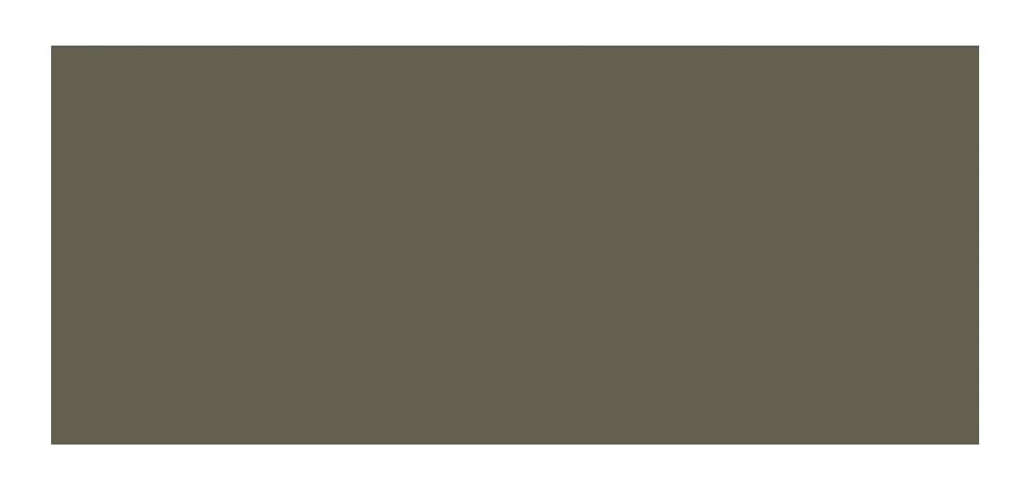 The Behavioral Sciences Program of the Santa Fe Institute